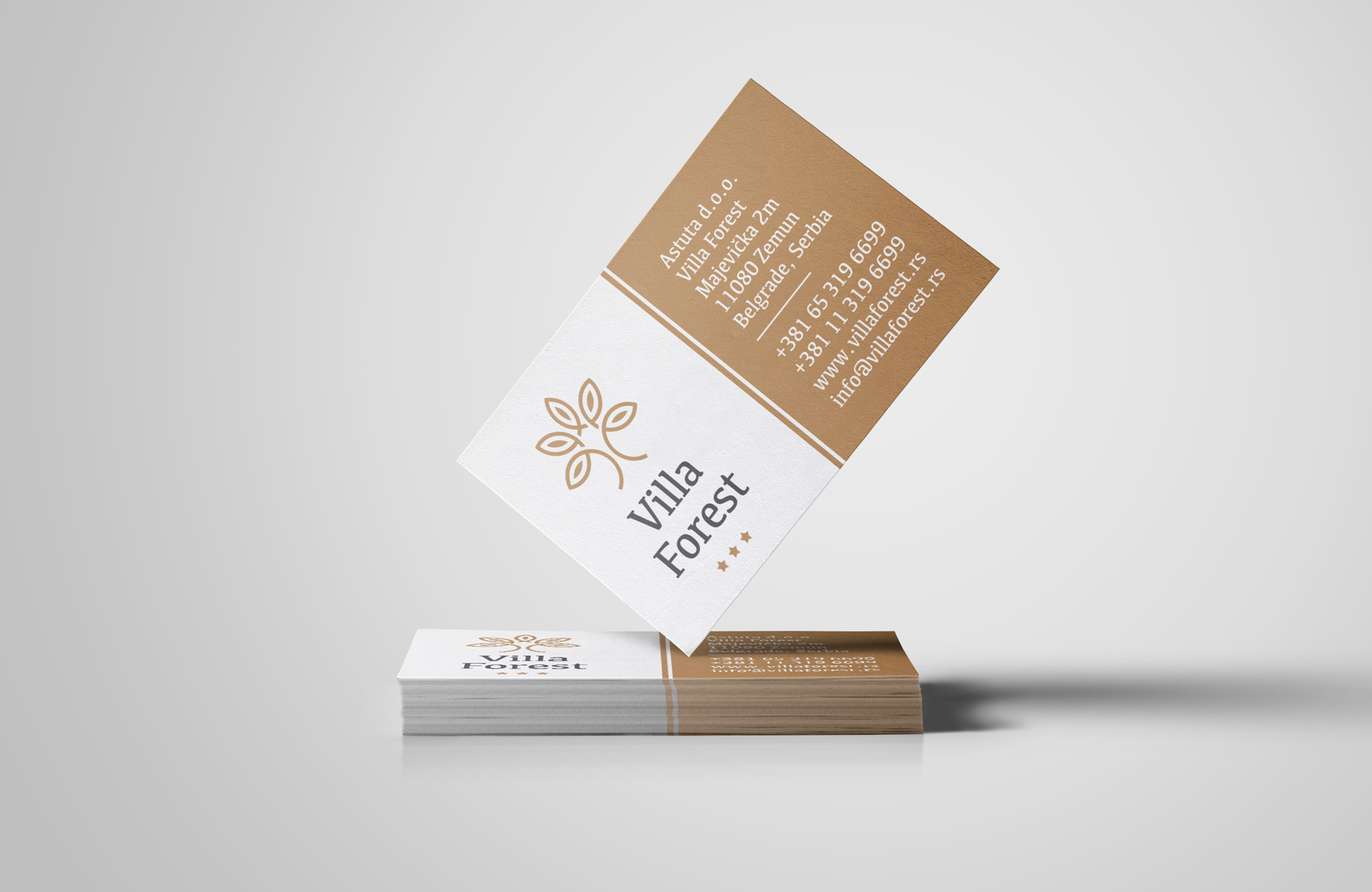 Dizajn elegantne vizitkarte za apart hotel Villa Forest